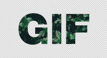Formato de imagen GIF