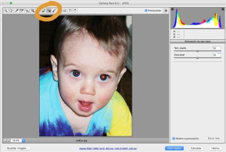 Emplear el filtro de Adobe Camera Raw