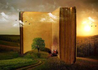 Diseño de un libro